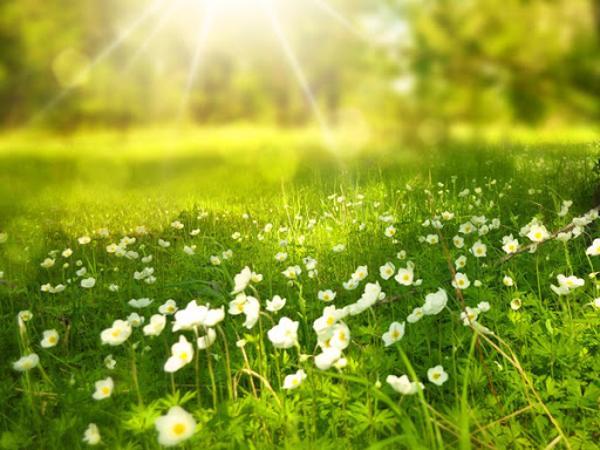 Ý nghĩa giấc mơ thấy nắng là gì?