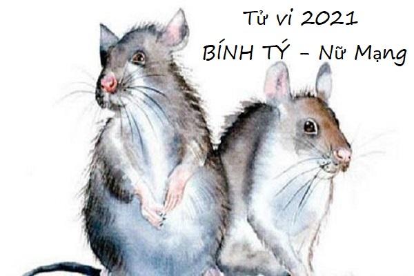 tu-vi-2021-binh-ty-1996-nu-mang