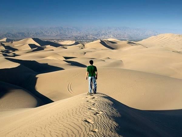 Mơ thấy bị lạc đường đánh con gì có khả năng đổi đời?